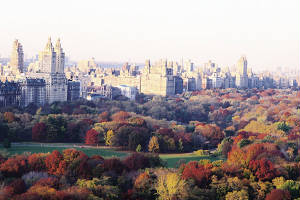 central_park_in_fall.jpg